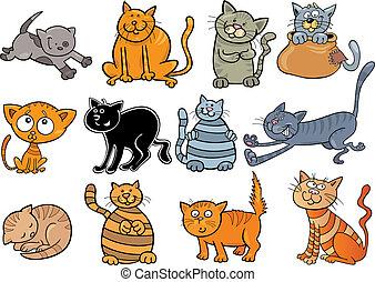 katte, sæt, cartoon