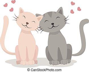 katter, kärlek