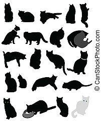 katter, silhuett