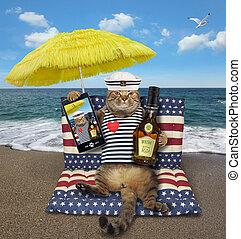 katz, airbed, sitzt, rum