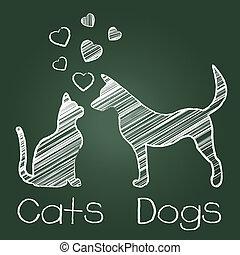 katzen, hunden, liebe, vorliebe