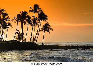 Kauai Hawaii Poipu beac
