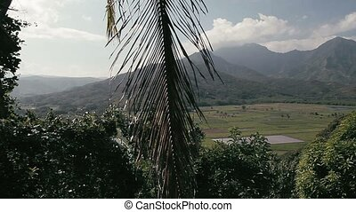 Kauai Landscape, Hawaii
