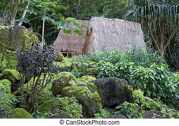 kauhale--traditional, hawaiianer, lebensunterhalt, standort