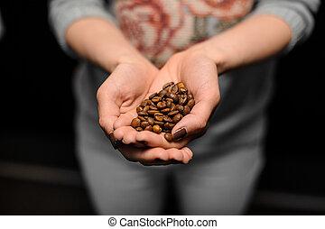 kawa, barista, jej, garść, granuluje, dzierżawa wręcza, mały, dziewczyna