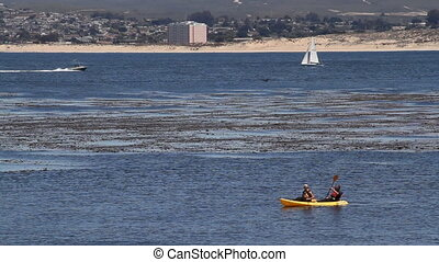Kayakers paddle, sailboat and speedboat pass