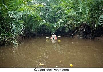 Kayaking at Klong Sung Nae, Thailand's Little Amazon. -...