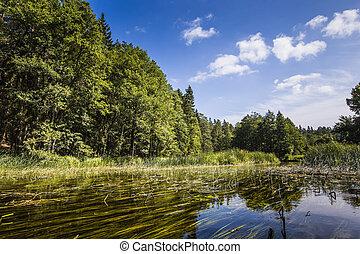 Kayaking on the Black Hancza river, Poland
