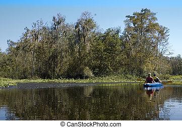 Kayaking the Creek