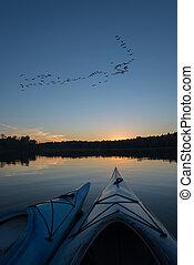 kayaks, pôr do sol, ge, rebanho