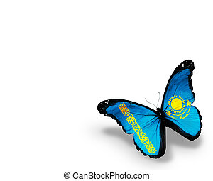 Kazakhstani flag butterfly, isolated on white background