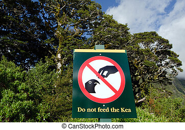 FIORDLAND, NZ - JAN 14:Do not feed the Kea sign on Jan 14 2014.The Kea is a large parrot about 48 cm (19 in) long and weighing 0.8?1 kg (1.8?2.2 lb)and It's one of ten endemic parrot species in NZ.