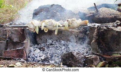 Kebabs with chicken Are Cooked On The Fire