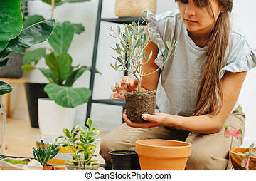 Keen woman in living room, replanting house plant from pot to pot. Cropped