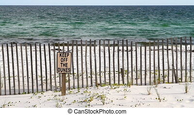 Sand fence is used to help accumulate wind blown sand at a restoration project and keep tourists from trampling the vegetation that holds down the sand while waves break on the shore in the background on a Florida beach.