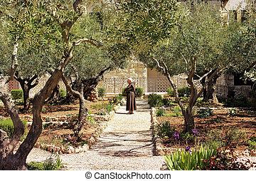 keeper of the Garden of Gethsemane, Jerusalem .place of...