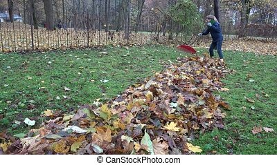 keeper woman tidying leaves in garden backyard. Huge pile of raked leaves. Preparing compost in autumn time. Static shot.