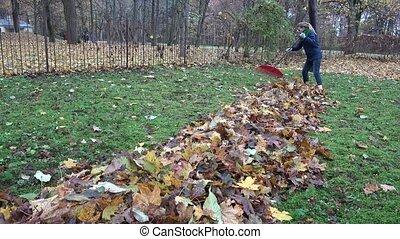 keeper woman tidying leaves in garden backyard.