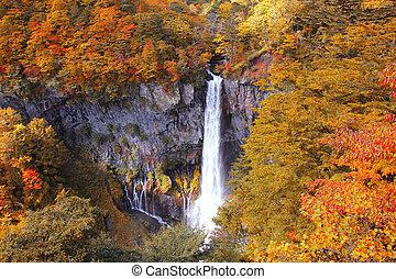kegon, évad, vízesés, ősz