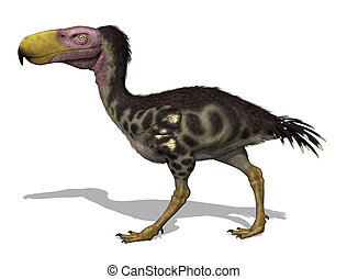 The Kelenken was a giant flightless predatory bird (aka 'terror bird') that lived in Argentina 15 million years ago - 3D render.