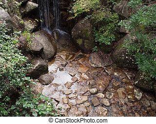 keleti, japanese kert