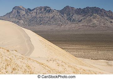 kelso, dyner, sand