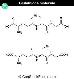 kemisk, glutathione, struktur