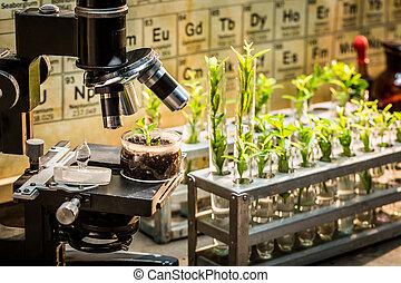 kemisk, laboratorium, med, mikroskop, och, planterar