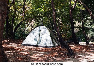 kempingezés, sátor, -ban, táborhely, közben, nappal, alatt, erdő