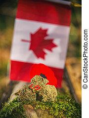 kender, szem, előtt, egy, canadian lobogó, -, orvosi, marihuána, fogalom