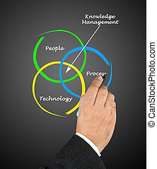 kennis, management