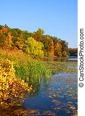 Kent lake landscape in Michigan in early autumn time