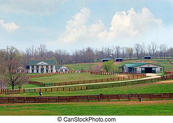 kentucky , άλογο αγρόκτημα