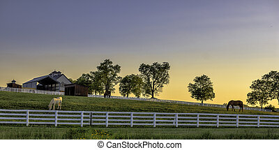 Kentucky farm at sunrise