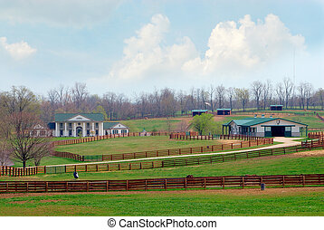 Kentucky Horse Ranch - A beautiful horse ranch near...