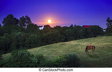 Kentucky moonrise
