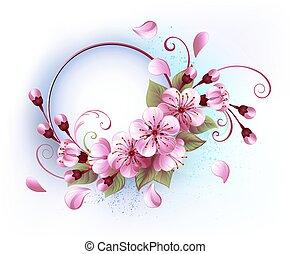 kerek, transzparens, sakura