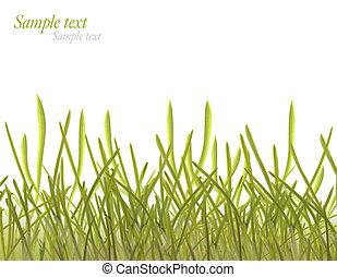 keret, fű