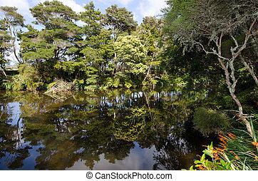 KeriKeri - New Zealand