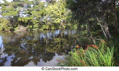 Kerikeri Waterfalls Nature Reserve, Northland, New Zealand -...