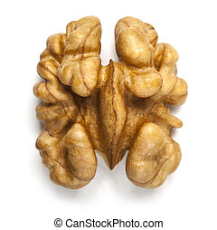 walnut - Kernel walnut isolated on the white background ...