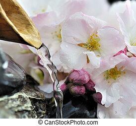 kers, fontijn, bloesems