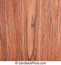 kers, hout samenstelling, houtstructuur