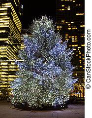 kerstboom, buiten, met, lichten, op