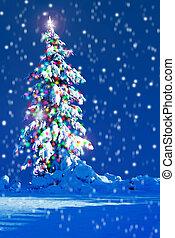kerstboom, buitenkant.