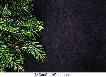 kerstboom, tak, op, bord, met, de ruimte van het exemplaar, voor, groet