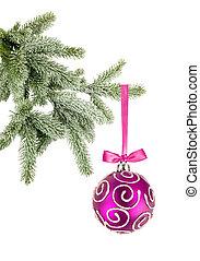 kerstmis bal, op, de, boompje, vrijstaand, op wit, achtergrond