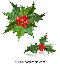 kerstmis, bloem, hulst bes