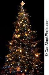 kerstmis boom steekt aan