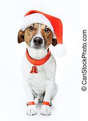 kerstmis, dog, kerstman